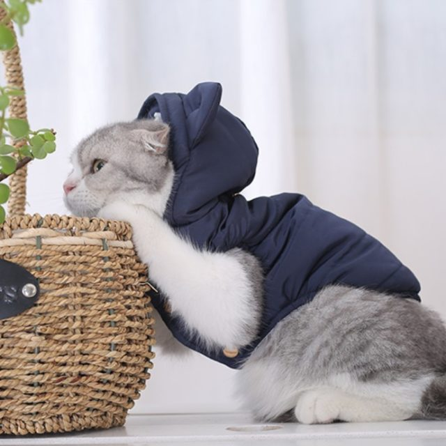 Cat's Kawaii Cotton-Padded Jacket