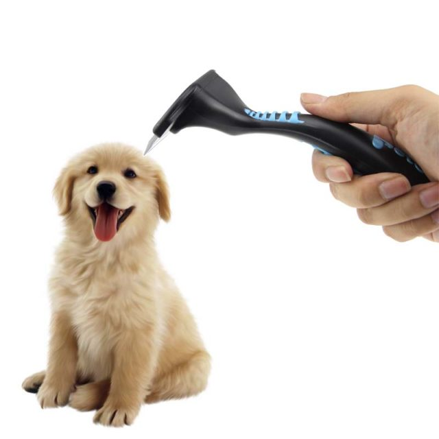 Pastel Detail Pet Grooming Brush