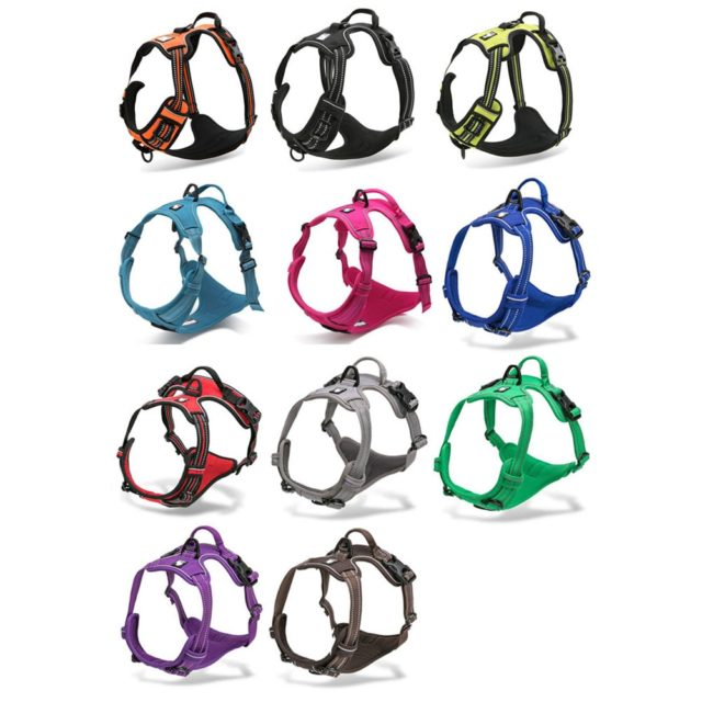 Dog's Reflective Nylon Harness