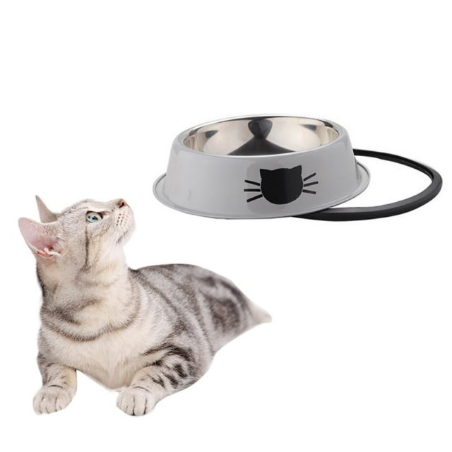 Anti-Skid Bowls for Cat