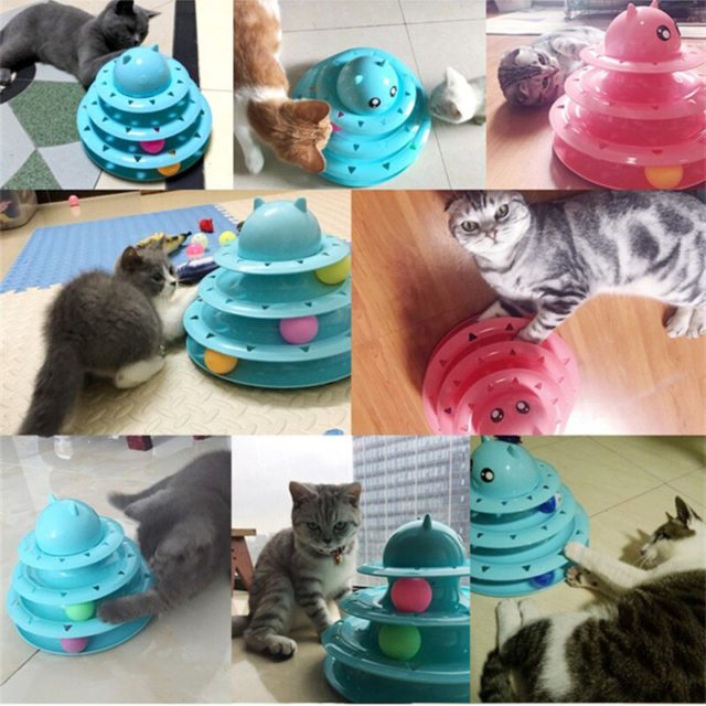 Multicolor Plastic Ball Based Disk Toy for Cats