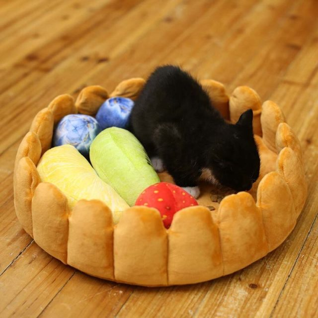 Pet's Fruit Tart Shaped Bed