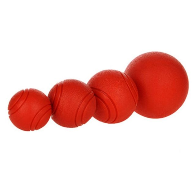 Bite-Resistant Rubber Dog's Ball