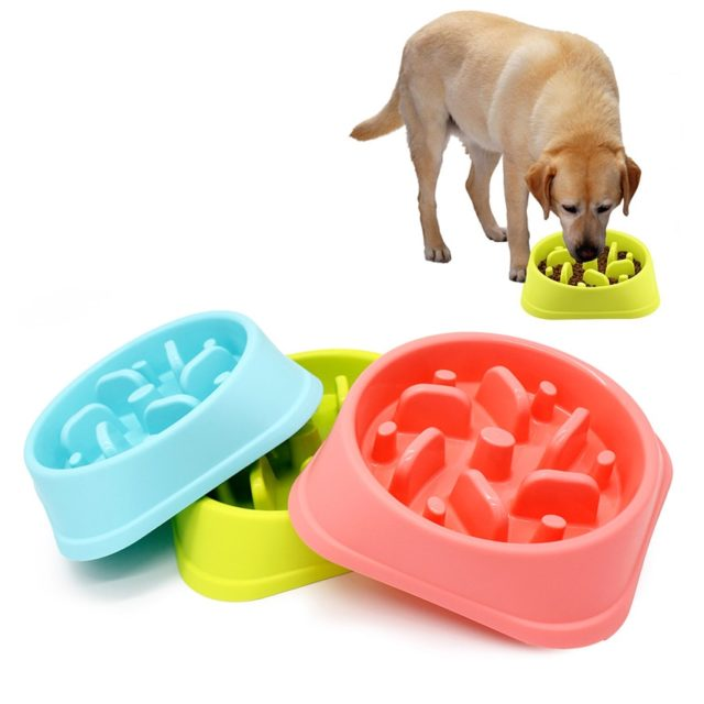Pet's Bright Plastic Feeding Bowl