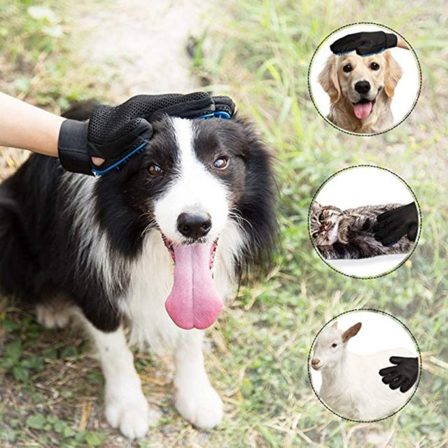 Pet's Bright Silicone Hair Removing Glove