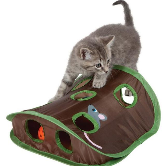 Hidden Mouse Hunting Toy for Cats